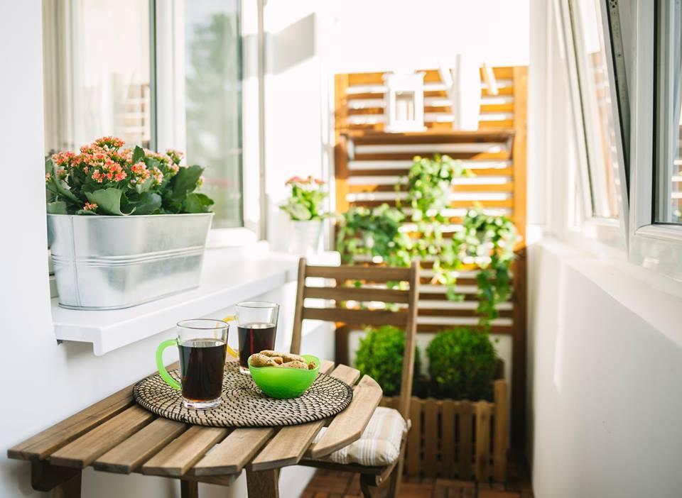 Elementele naturale aduc un sentimente de relaxare - plante, flori, decoratiuni verzi, mobilier din lemn natural, vor aduce energie pozitiva. In ceea ce priveste speciile, chinezii cred despre bambusi ca aduc fericire.